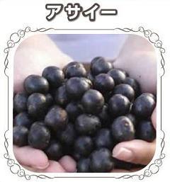 kousuiso328-asaiberi