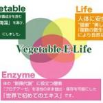 藤原紀香さん愛用の酵素ドリンクはベジタブルEライフが秘訣だった!