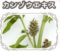 kanzouekisu