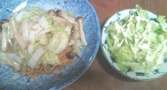 yaseyasukunaru4