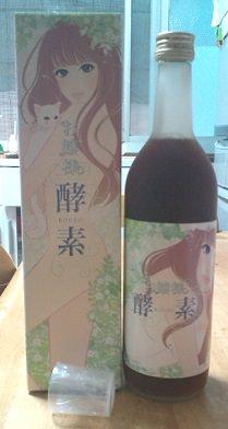 ojousamakouso-saiyasune2