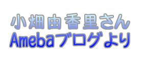 kobatayukari-daietto2