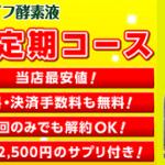 bejiraifu-kaiyaku4