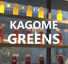 kagome-greens